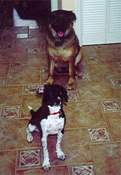 Buzz&Maggie